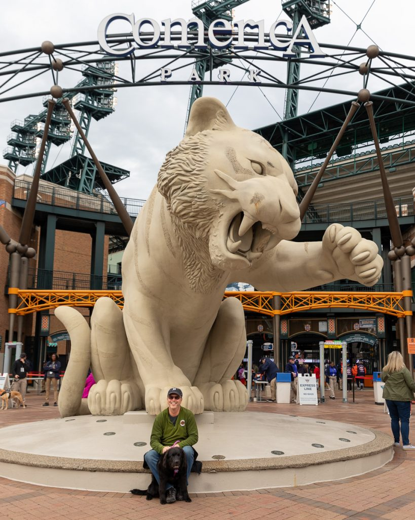 A man and a newfie puppy posing under the Comerica Park sign and Tiger statue before Bark at the Park