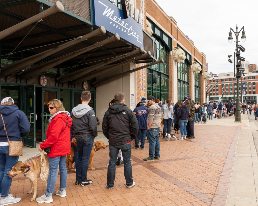 The line of people and dogs waiting to enter Tigers Stadium for Bark at the Park