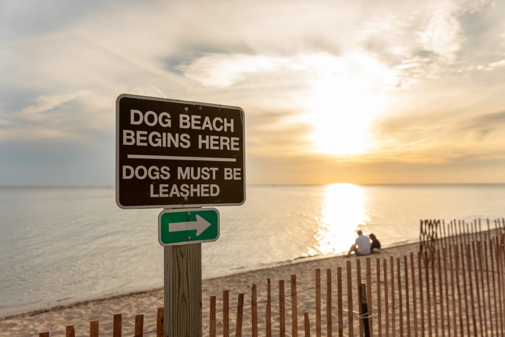 A sign at Kruse park along Lake Michigan indicating the dog friendly section of the beach