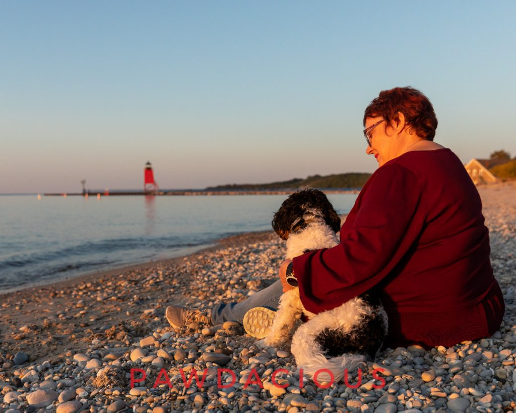 A woman sitting with a small dog looking at the Charlevoix light house at sunset, seen from behind